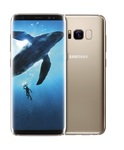 Samsung Galaxy S8 G950F-DS Gold sotovikmobile.ru +7(495) 005-94-13
